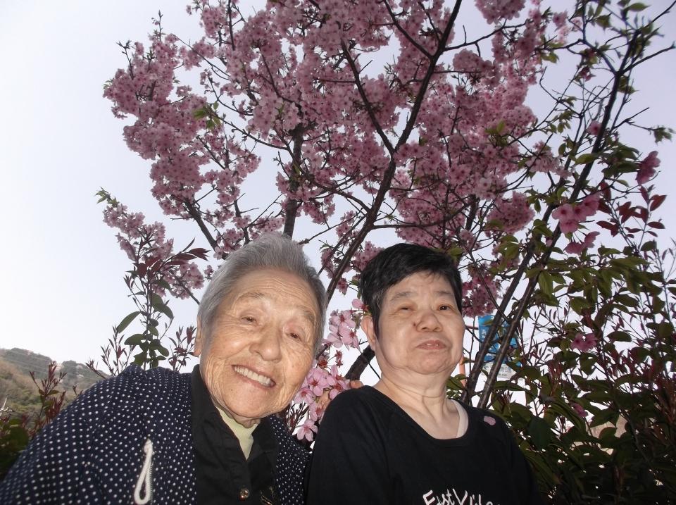 2018年4月 桜観賞