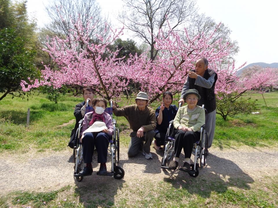 2018年4月 備中国分寺桜見学