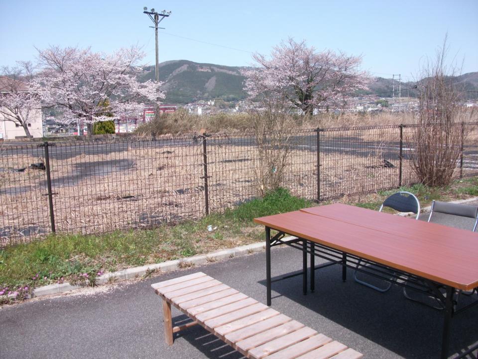 桜を見ながらの宴会